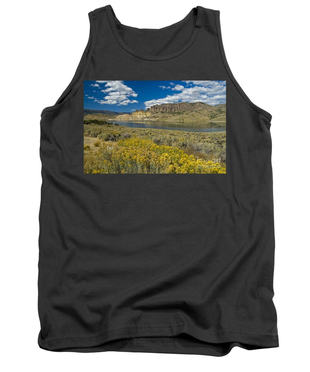 Blue Mesa Tank Top featuring the photograph Blue Mesa Reservoir - H by Tim Mulina