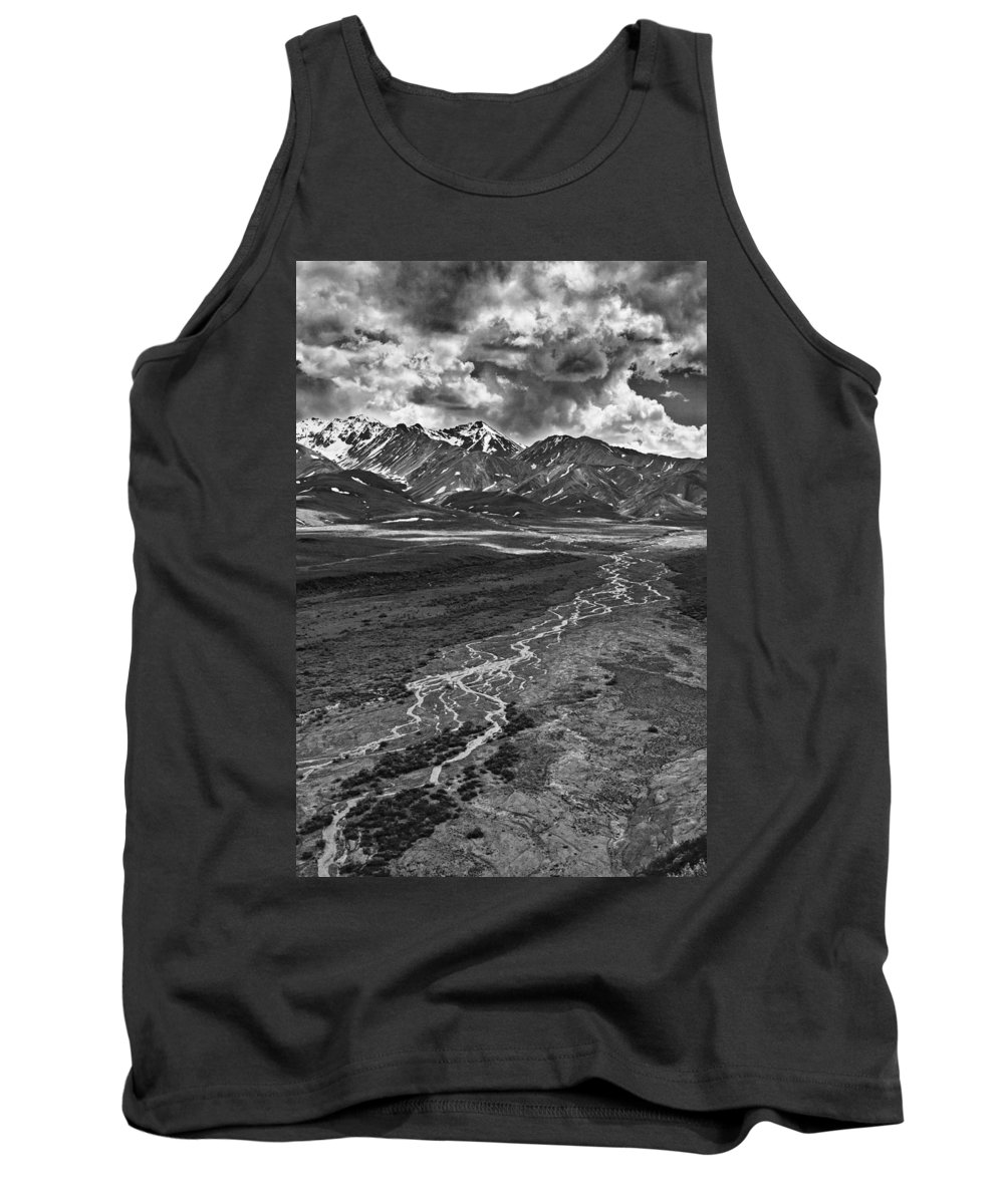 Braided River Tank Top featuring the photograph Braided River by Wes and Dotty Weber