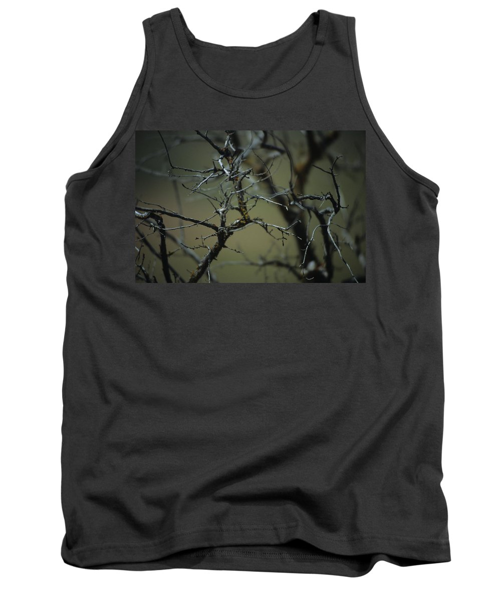 Branches Tank Top featuring the photograph Branches by One Rude Dawg Orcutt