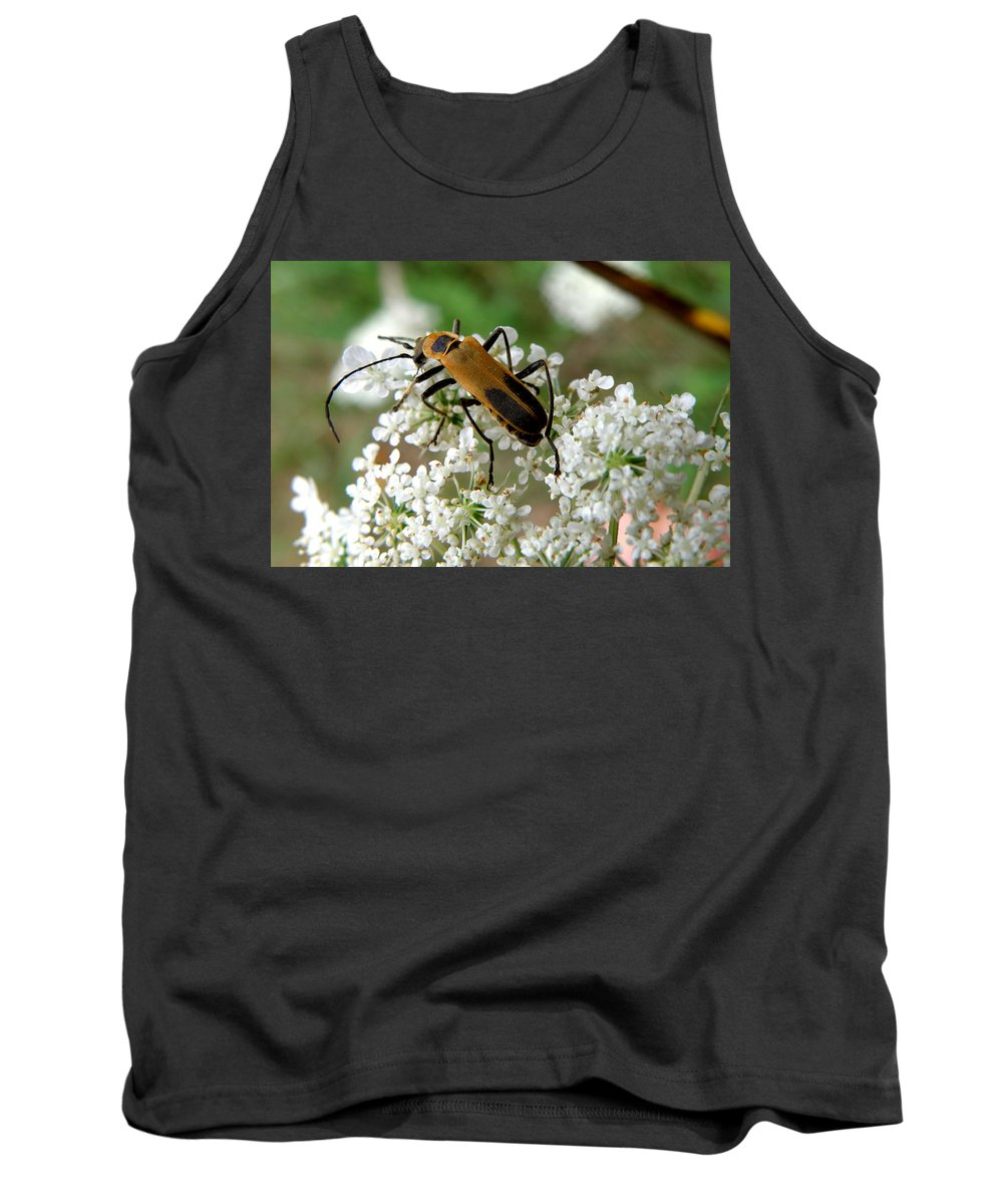 Nature Tank Top featuring the photograph Bug And Flowers by Jiayin Ma