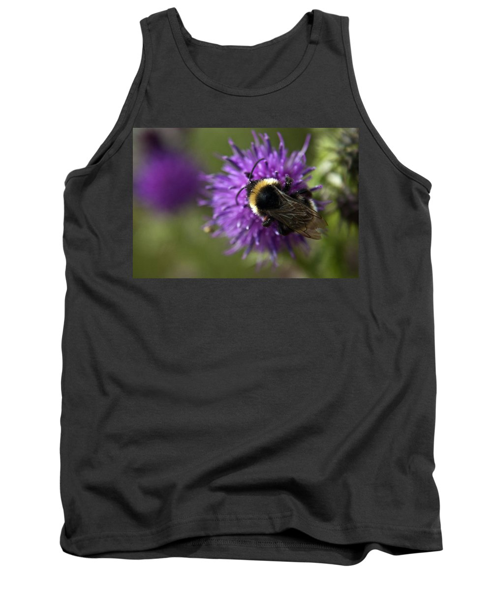 Bee Tank Top featuring the photograph Bumble Bee by Vicki Field