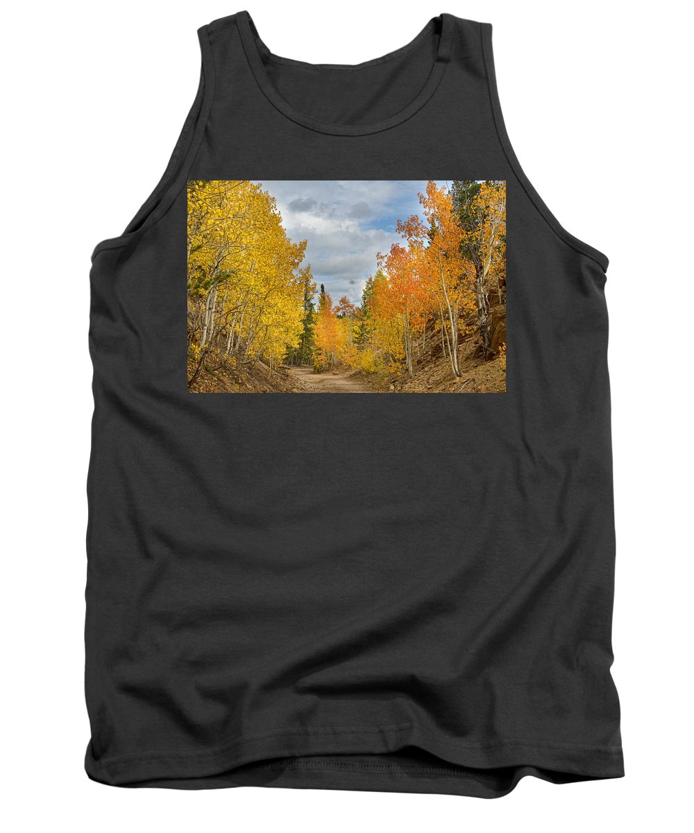Colorful Tank Top featuring the photograph Burning Orange And Gold Autumn Aspens Back Country Colorado Road by James BO Insogna