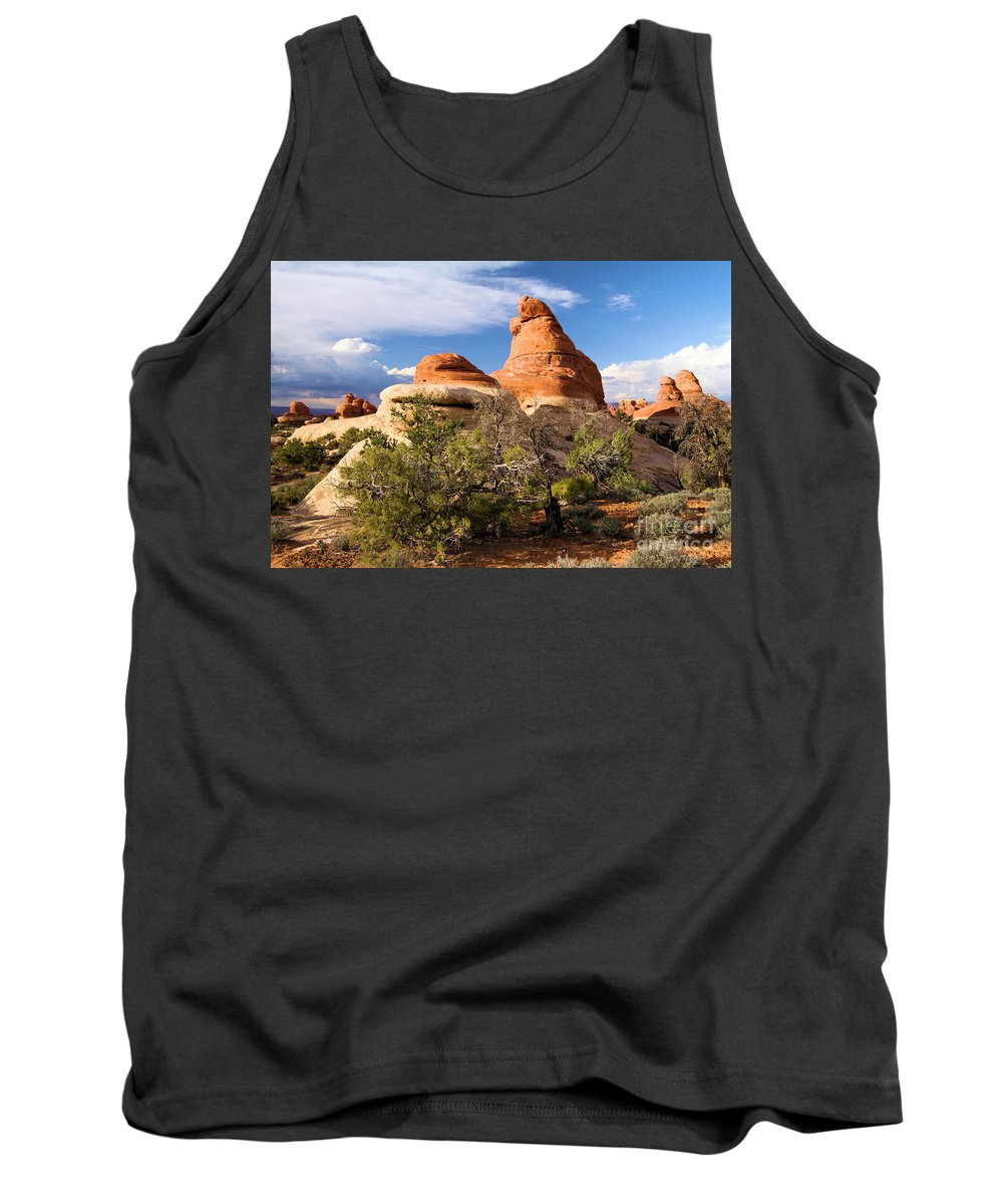Canyonlands Tank Top featuring the photograph Canyonlands Needles by Adam Jewell