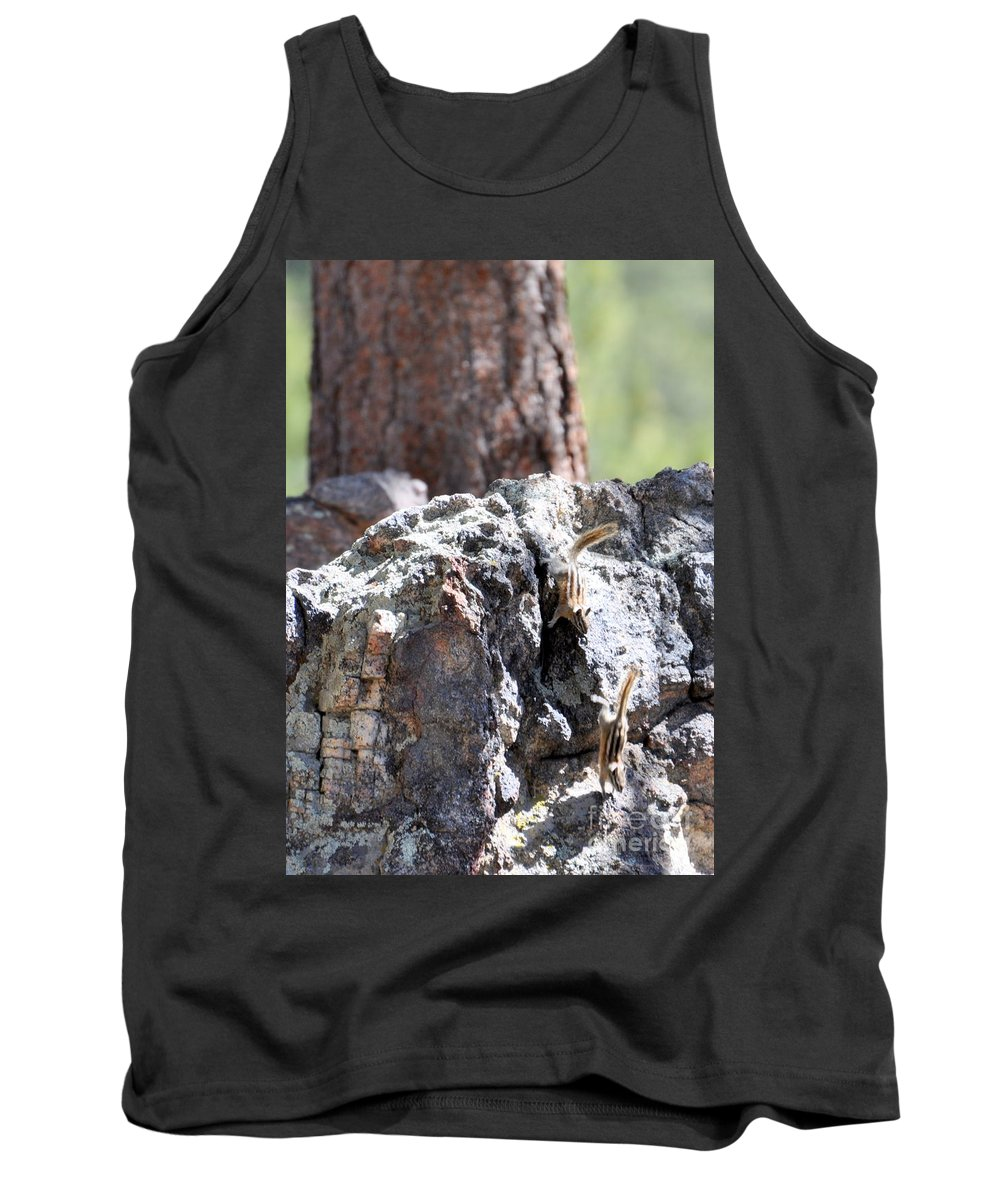 Chipmunk Tank Top featuring the photograph Chip N' Dale by Dorrene BrownButterfield