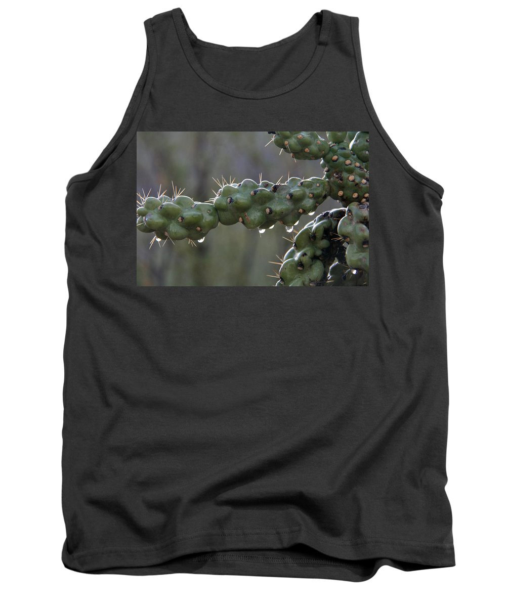 Cholla Tank Top featuring the photograph Cholla Cactus In The Rain by Elizabeth Rose