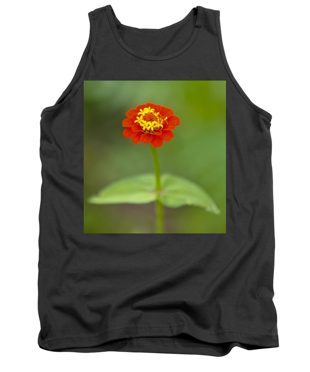 Beautiful Tank Top featuring the photograph Close Up by Susie Hoffpauir