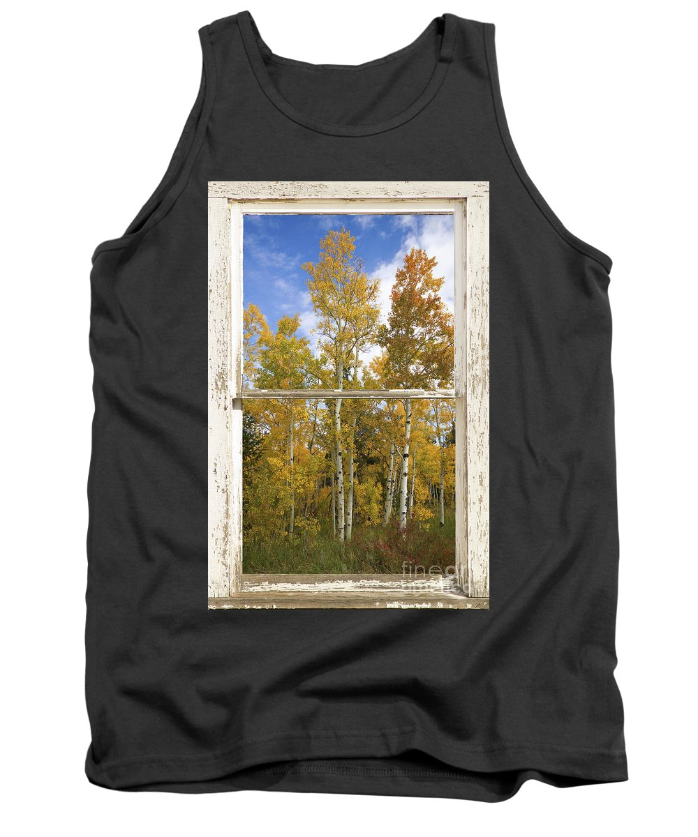 Windows Tank Top featuring the photograph Colorado Autumn Aspens Picture Window View by James BO Insogna