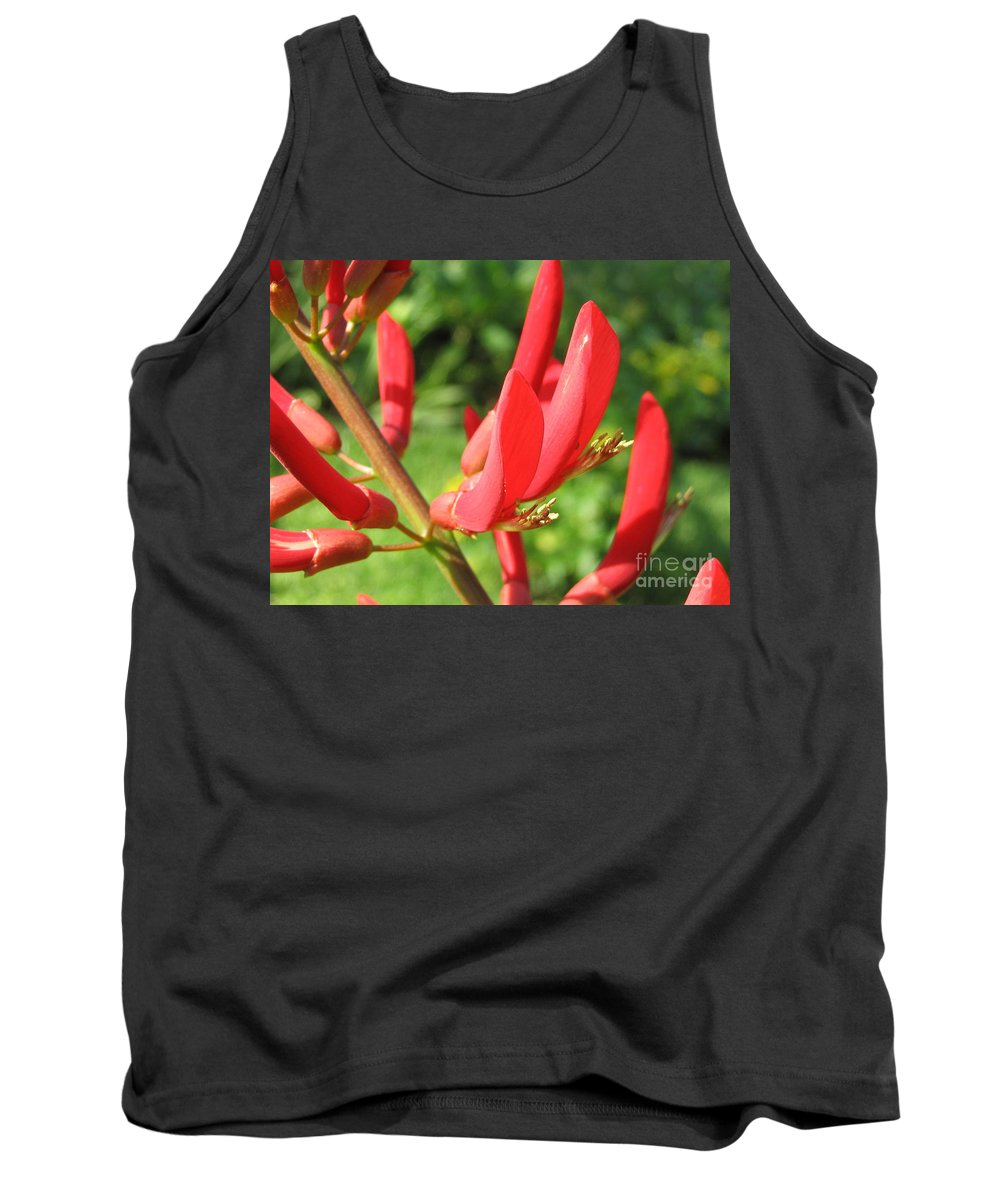 Tree Tank Top featuring the painting Coral Bean Tree by Mark Robbins