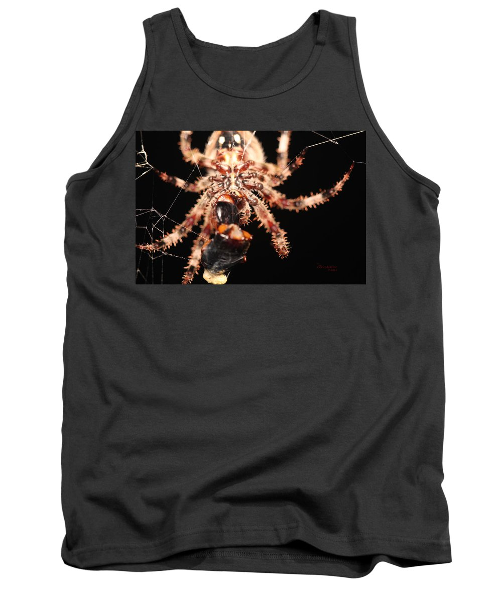 Spider Tank Top featuring the photograph Creepy Spider by Ericamaxine Price