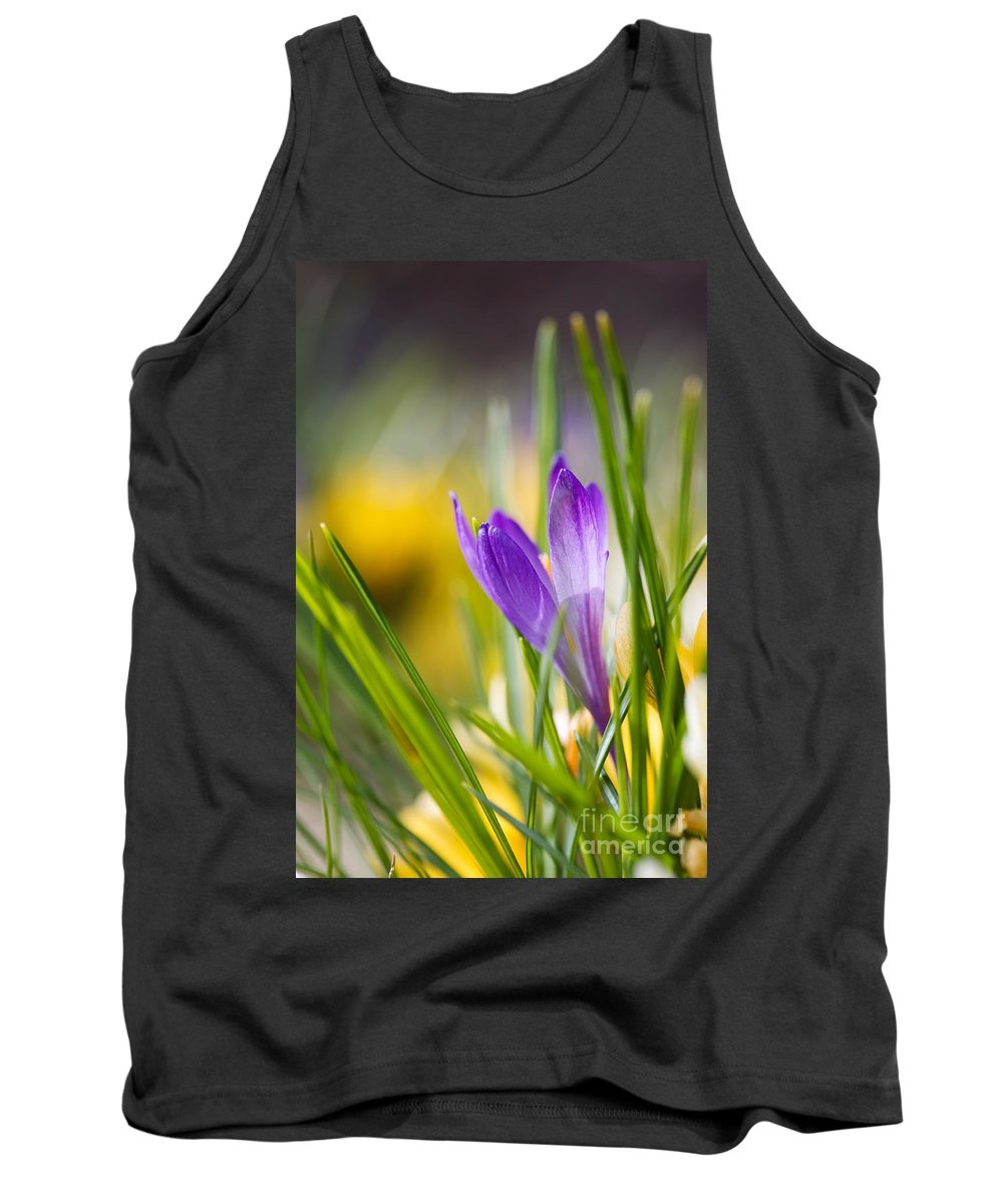 Crocus Tank Top featuring the photograph Crocuses by Kati Finell
