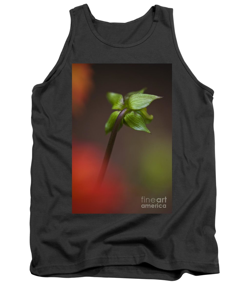 Nature Tank Top featuring the photograph Dahlia Bud by Heiko Koehrer-Wagner
