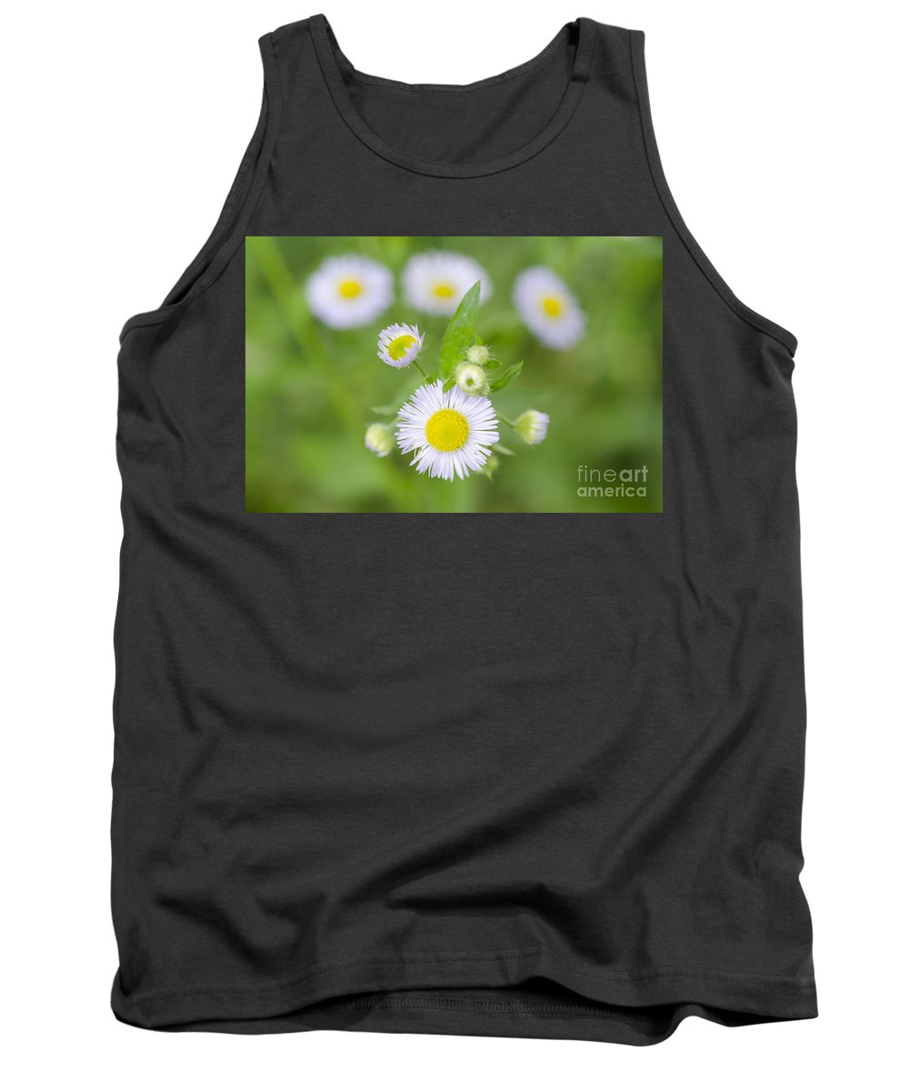Flowers Tank Top featuring the photograph Daisy Flowers by Mats Silvan