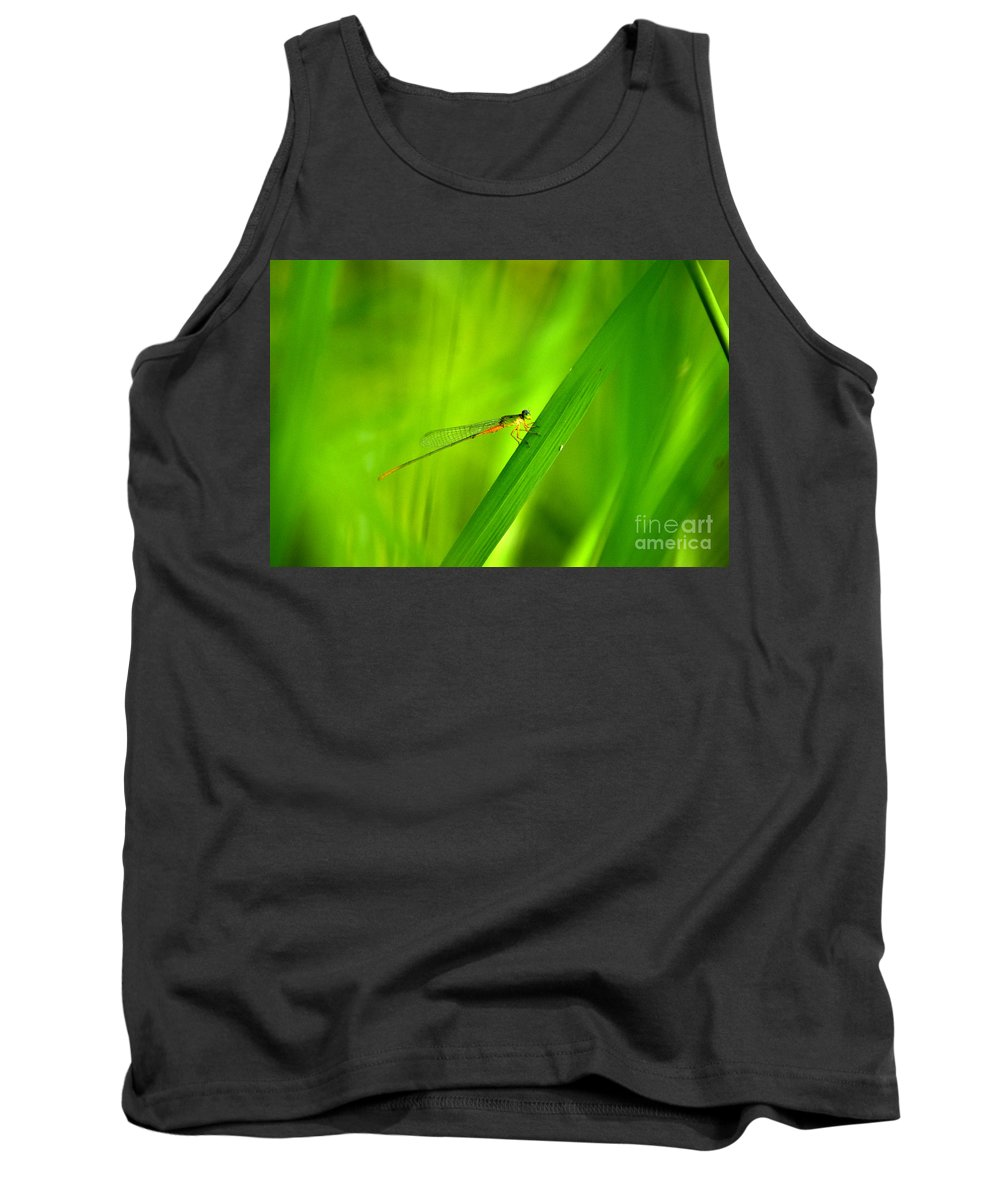 Dragonfly Tank Top featuring the photograph Dragonfly by Dattaram Gawade