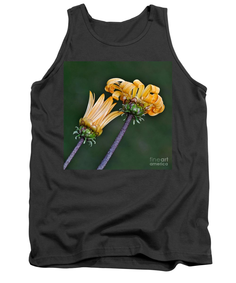 Photography Tank Top featuring the photograph Elegant Daisies by Kaye Menner
