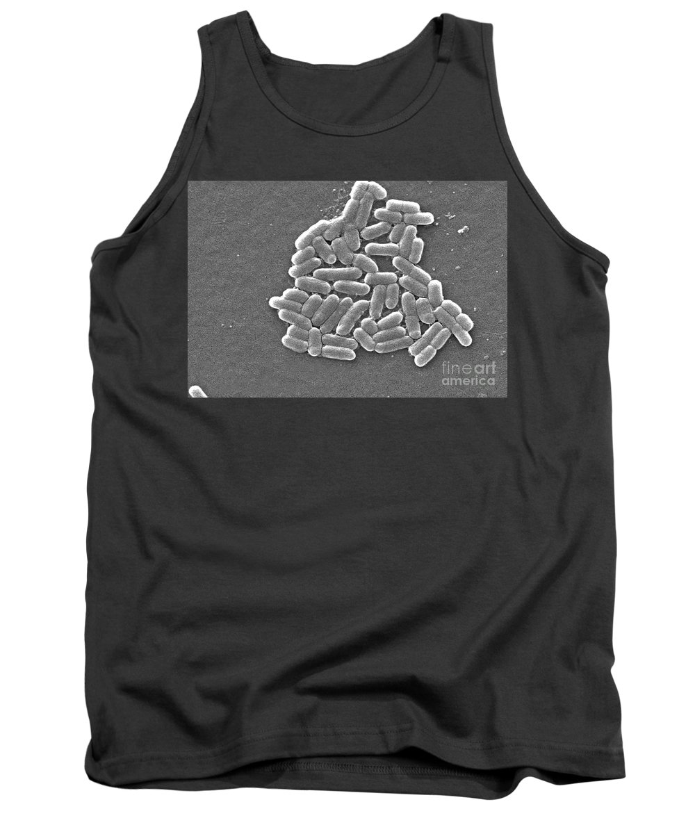 All Use Tank Top featuring the photograph Escherichia Coli, Sem by CDC/Science Source