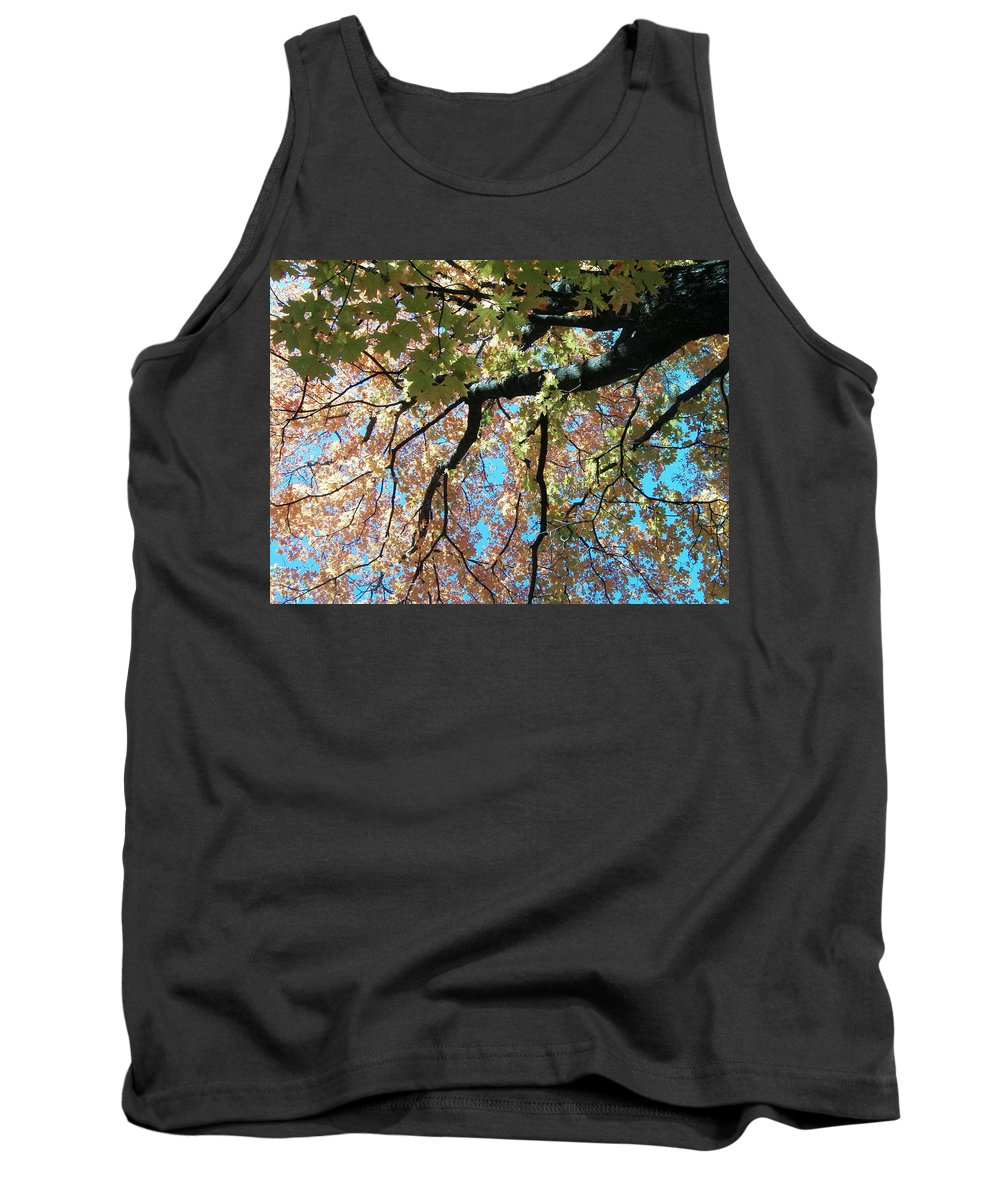 Trees Turning Fall Colors Tank Top featuring the photograph Falls Coming by Karen Capehart