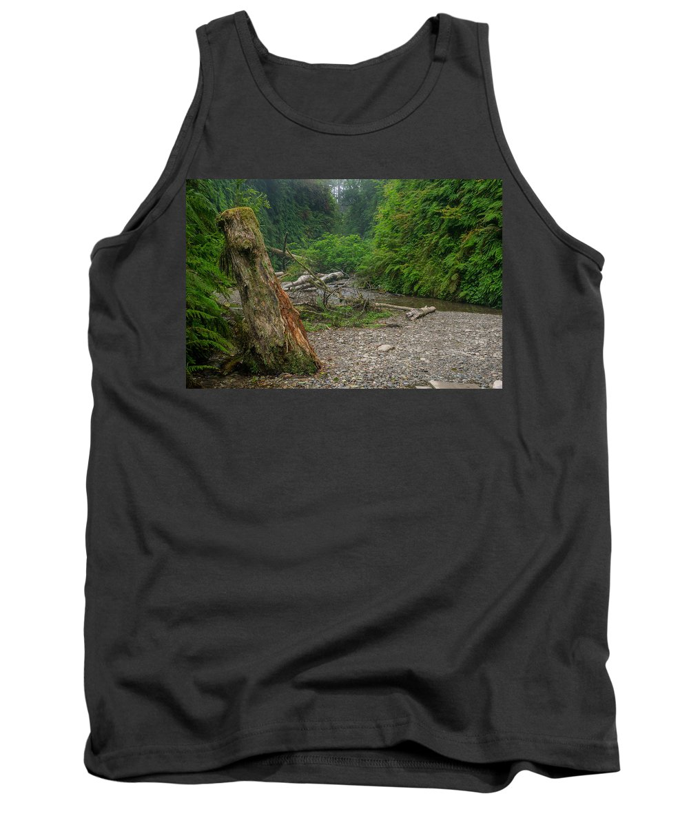 Fern Canyon Tank Top featuring the photograph Fern Canyon Trunk by Greg Nyquist