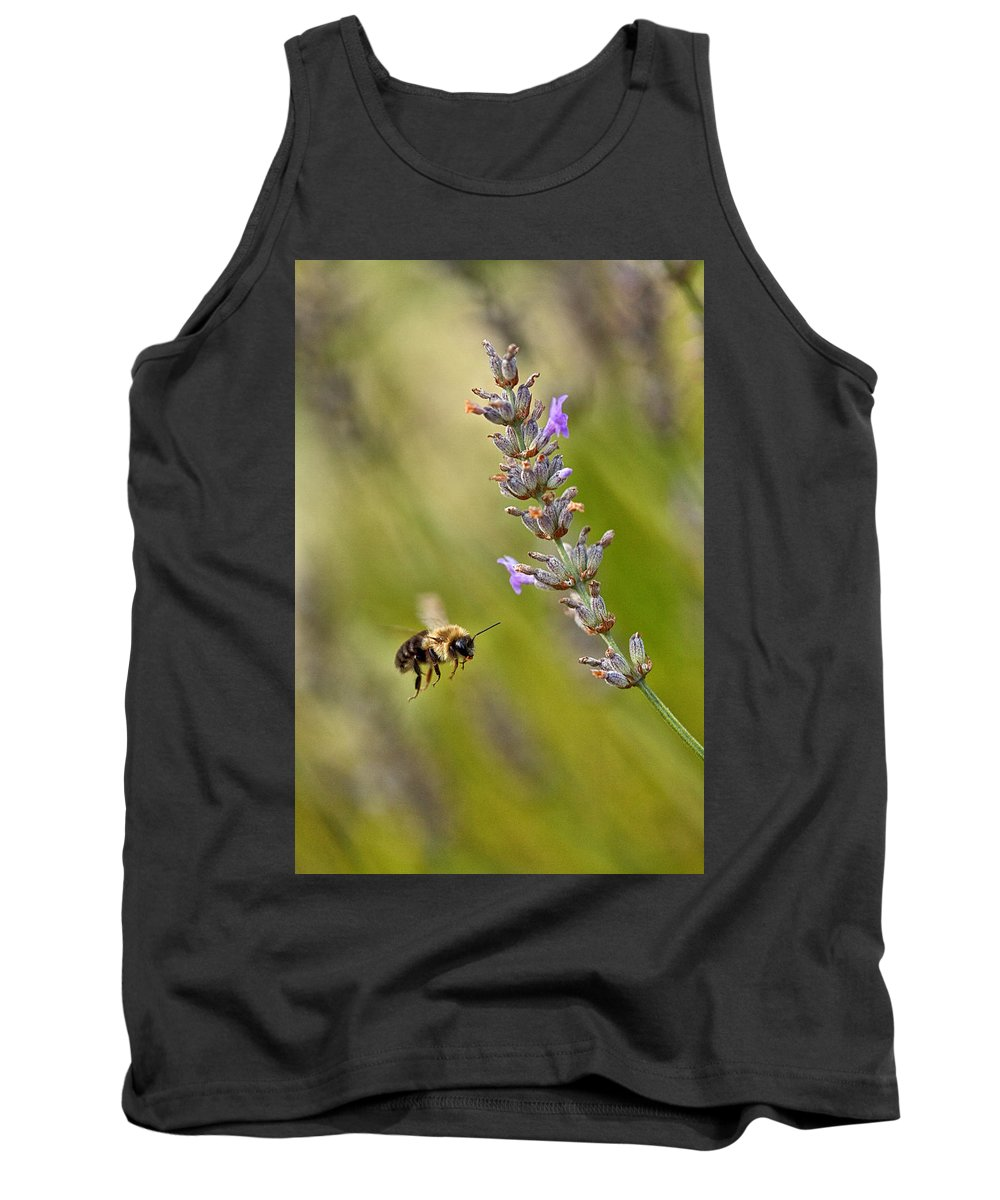 Bumble Bee Tank Top featuring the photograph Flight Of The Bumble by Karol Livote