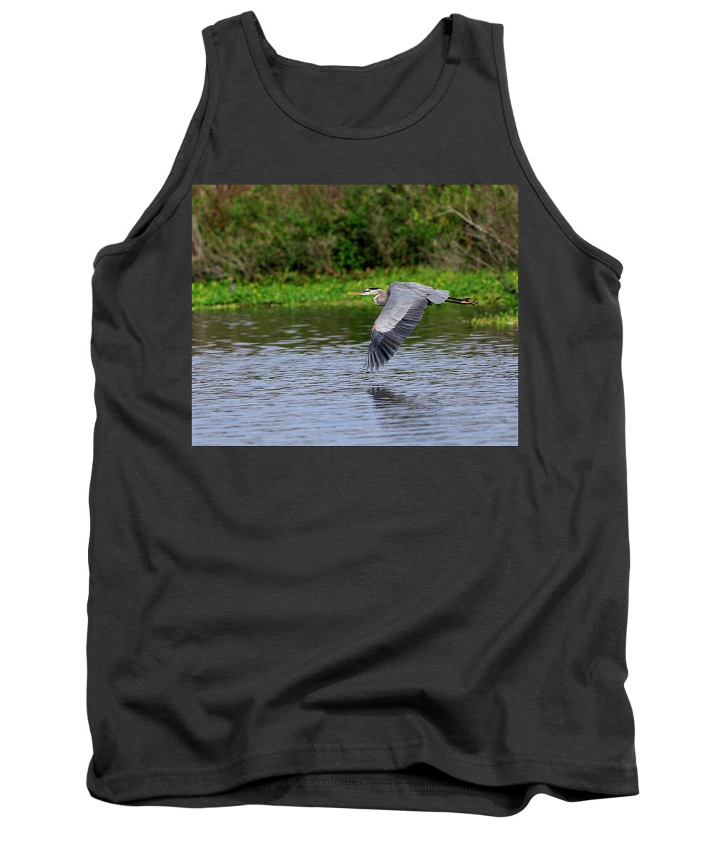 Great Blue Heron Tank Top featuring the photograph Flying Across The St Johns by Bill Dodsworth