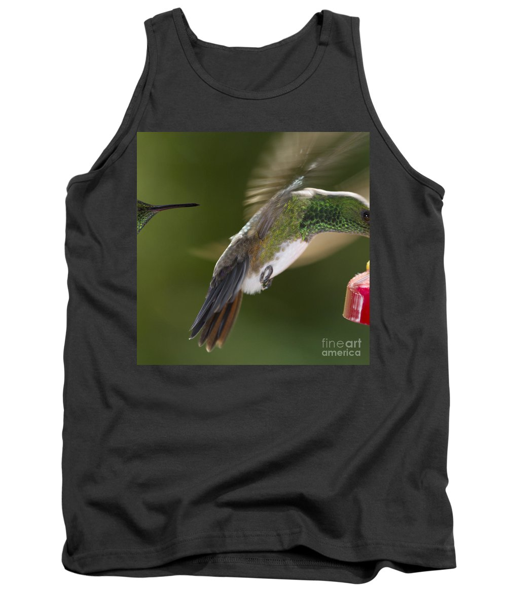 Hummingbird Tank Top featuring the photograph Follow-up by Heiko Koehrer-Wagner