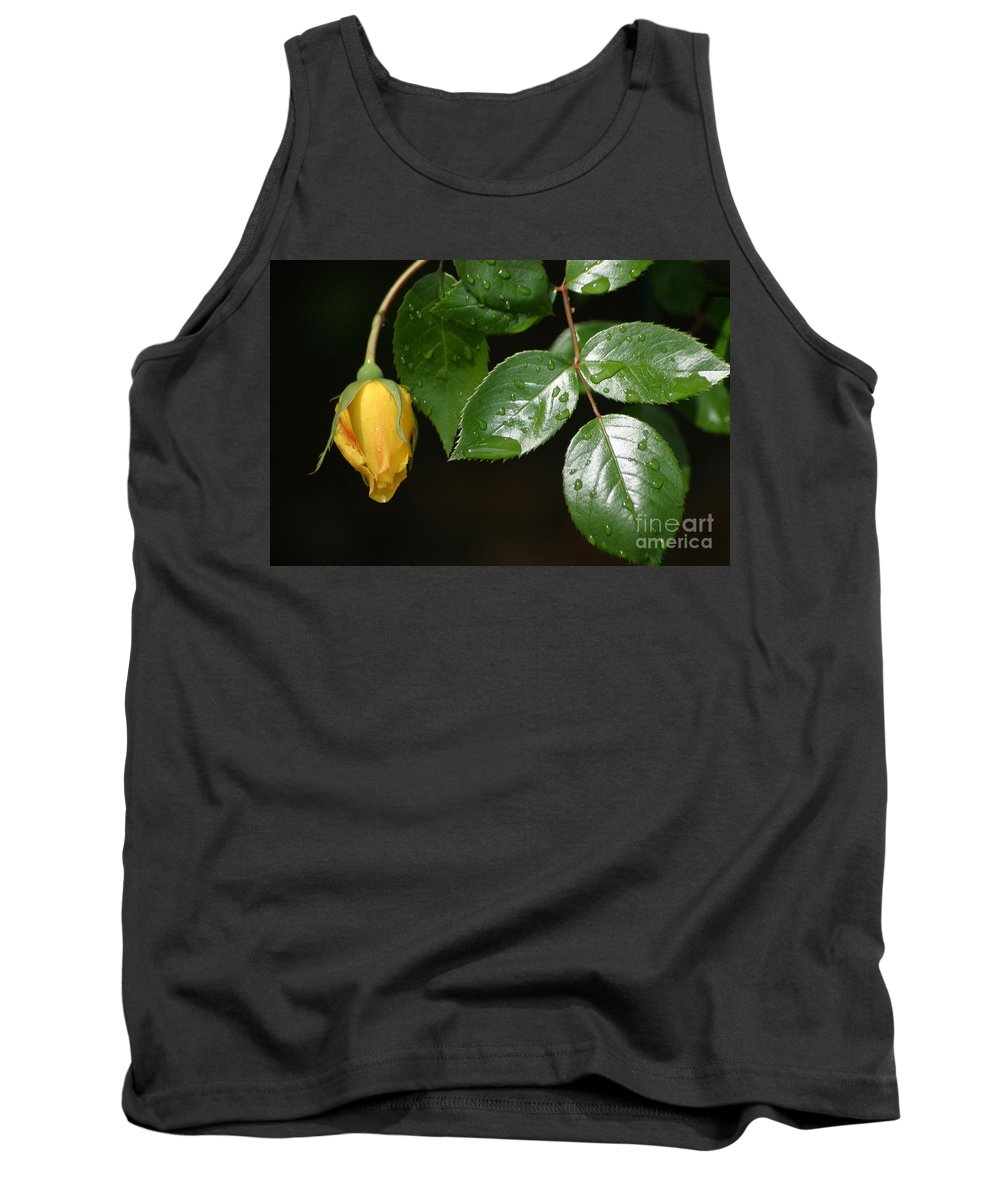 Rose Tank Top featuring the photograph Friendship Rose by Living Color Photography Lorraine Lynch