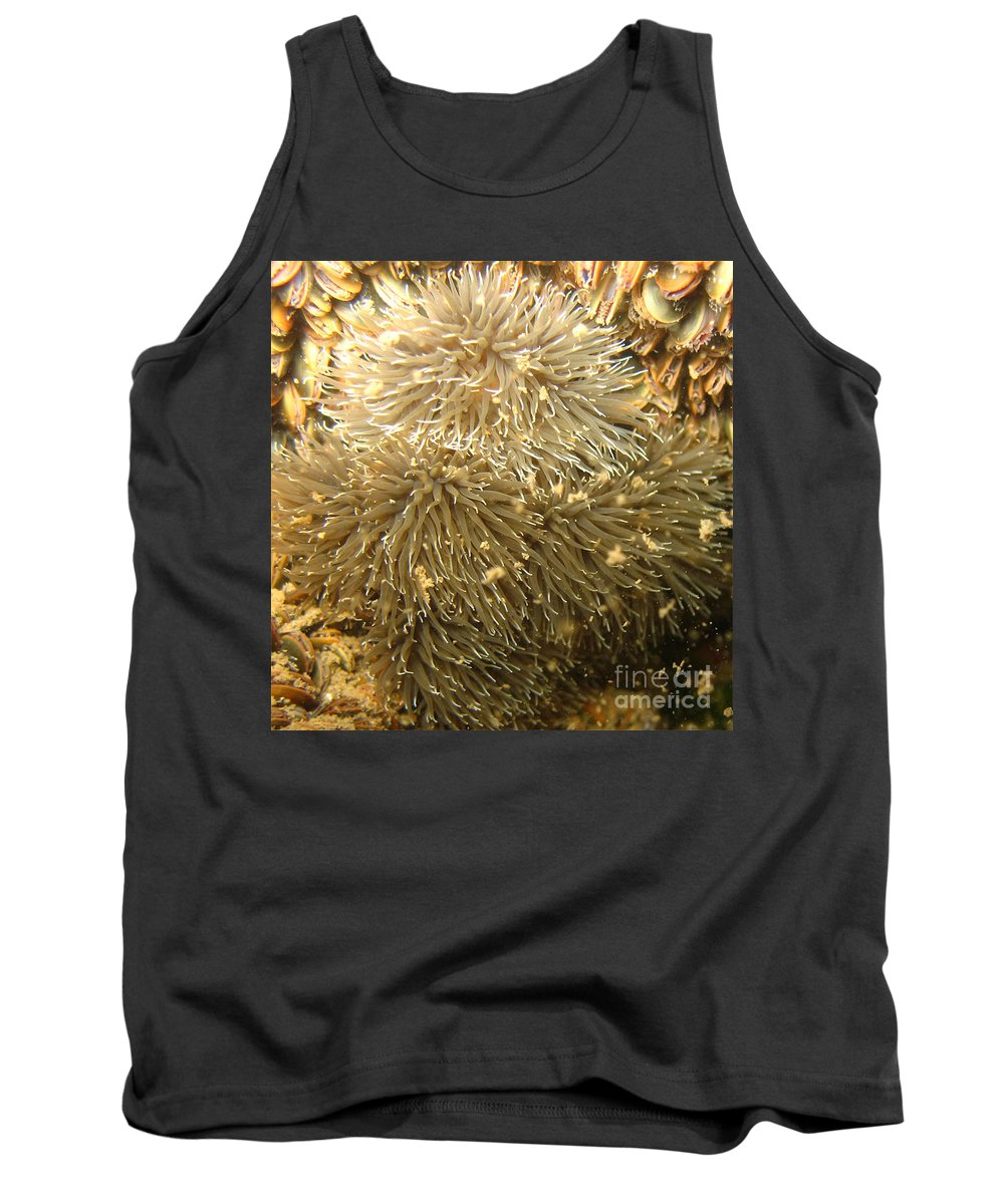 Sea Anemone Tank Top featuring the photograph Frilled Sea Anemone by Paul Ward