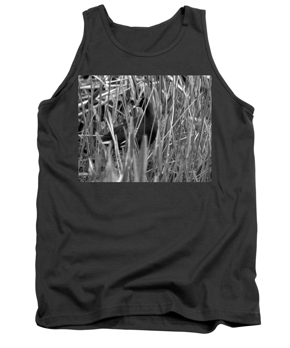 Gallinule Tank Top featuring the photograph Gallinule In The Grass by Jacob Klaus