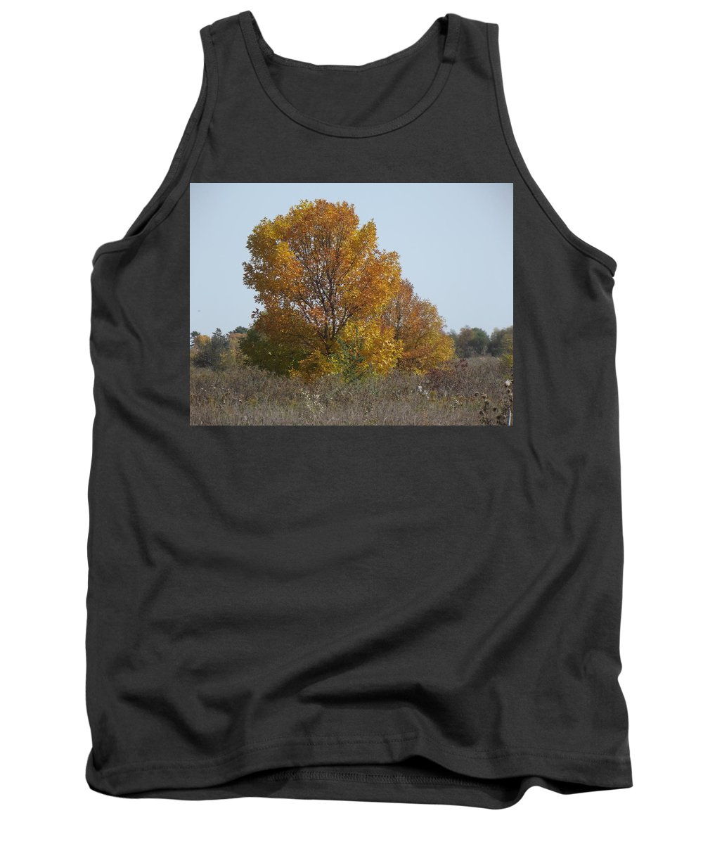 Blue Tank Top featuring the photograph Golden Tree II by Bonfire Photography