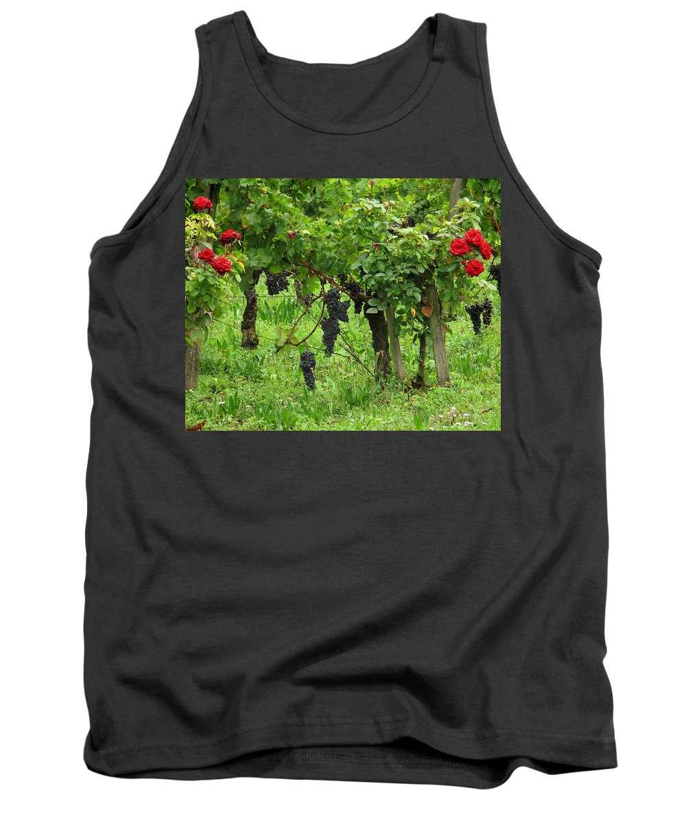 Vineyard Tank Top featuring the photograph Grape Vines And Roses I by Greg Matchick