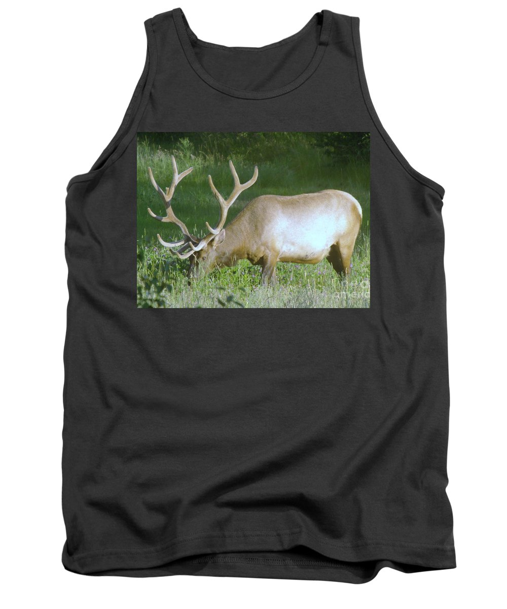 Wildlife Tank Top featuring the photograph Grazing Bull Elk by Jeff Swan