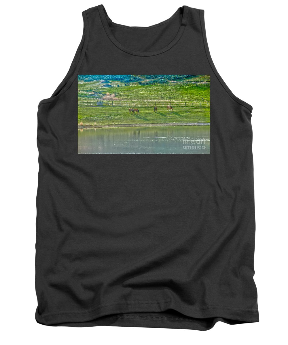 Ranch Tank Top featuring the photograph Grazing by Robert Bales