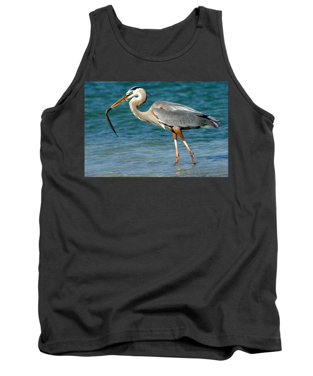 Great Blue Heron Tank Top featuring the photograph Great Blue Heron With Catch by Larry Allan