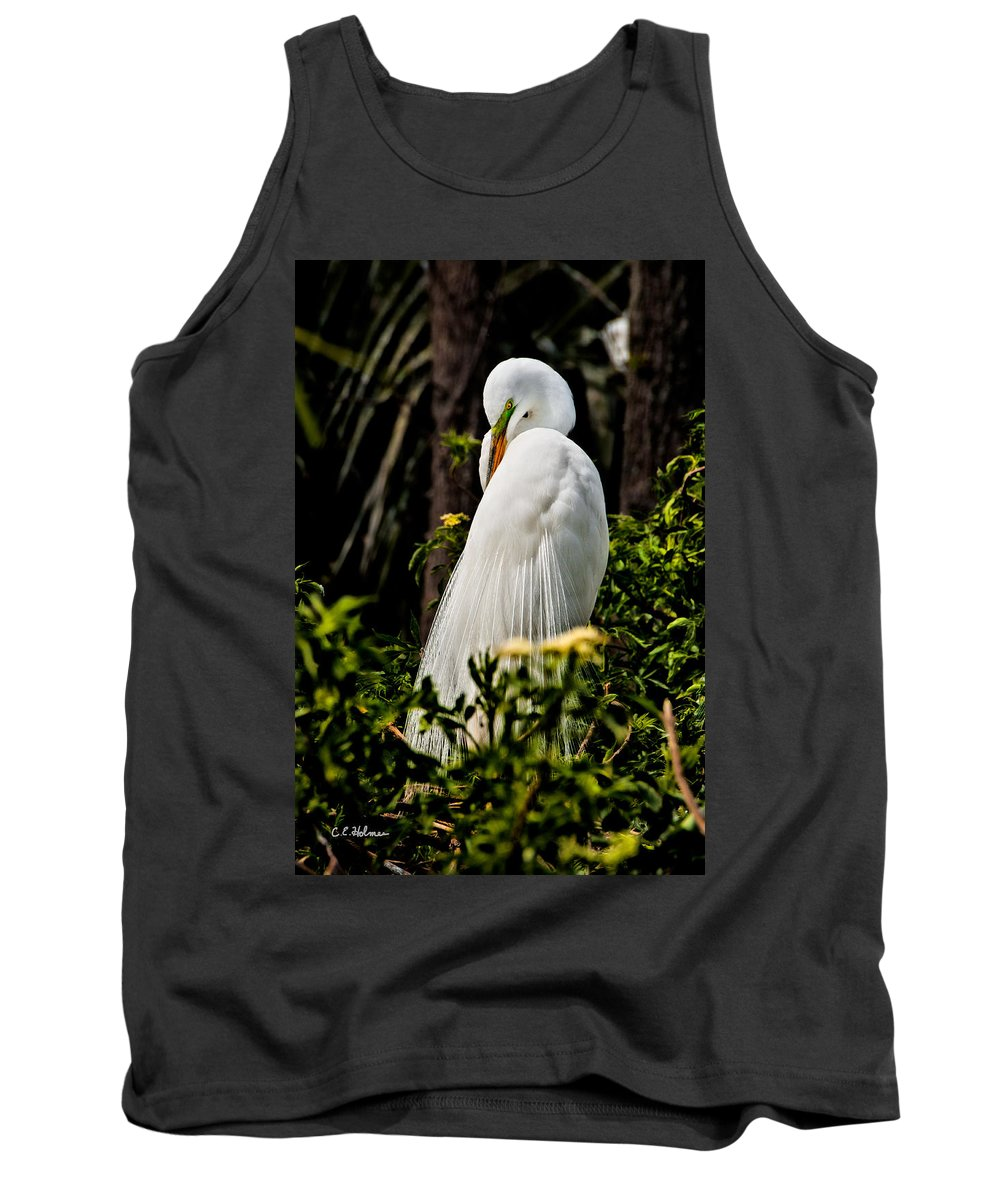 Avian Tank Top featuring the photograph Great Egret by Christopher Holmes
