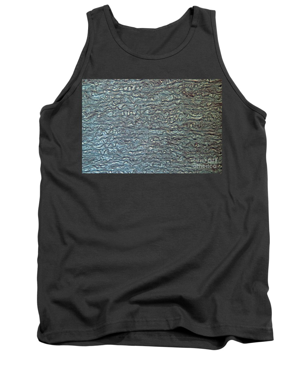 Anatomy Tank Top featuring the photograph Human Aorta by Eric V Grave