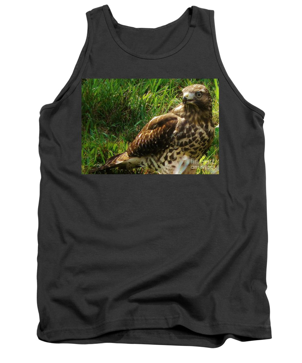 Hawk Tank Top featuring the photograph Immature Red Sholdered Hawk by Earl Williams Jr