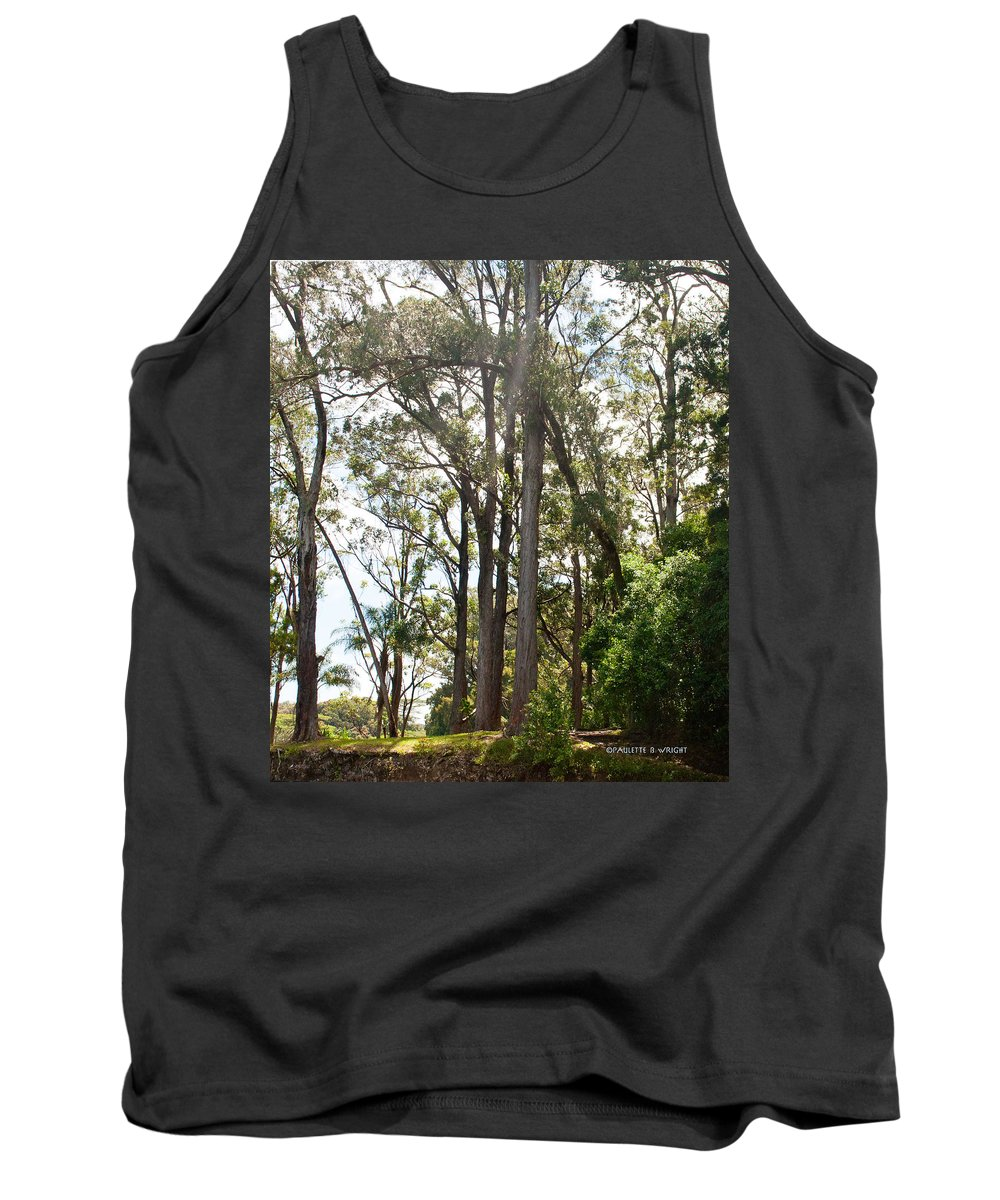 Interior Design Tank Top featuring the photograph Impossibly Tall by Paulette B Wright