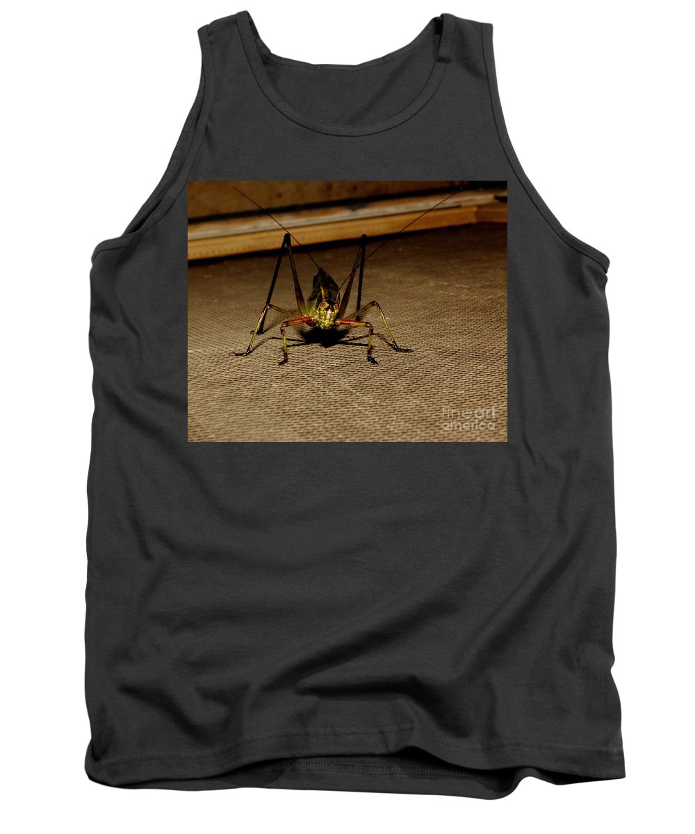Insect Tank Top featuring the photograph Katydid by Robert Frederick