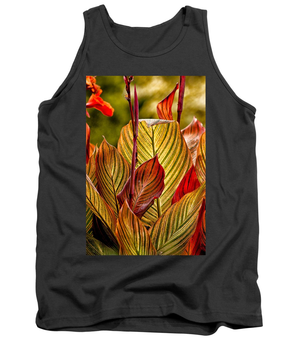 Leaves Tank Top featuring the photograph Leaf Lines by Lauri Novak