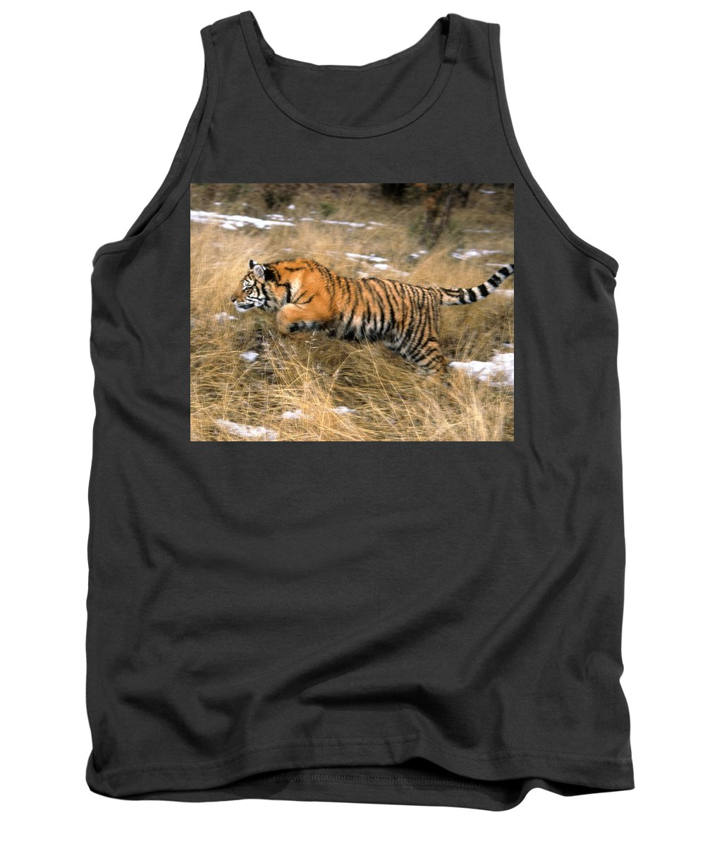 Siberian Tiger Tank Top featuring the photograph Leaping Siberian Tiger by Larry Allan