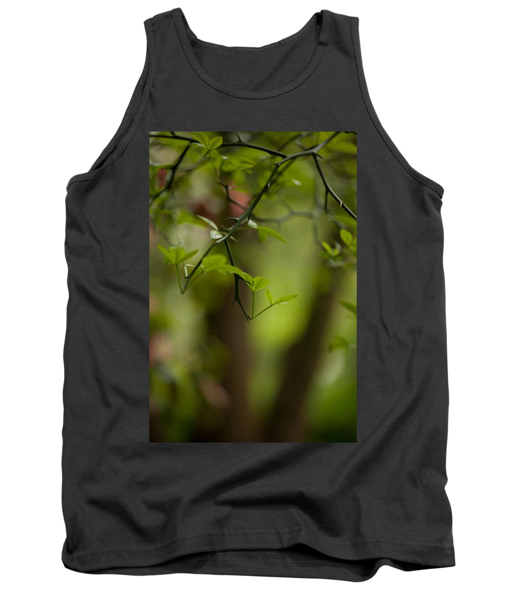 Tree Tank Top featuring the photograph Leaves And Thorns by Mike Reid
