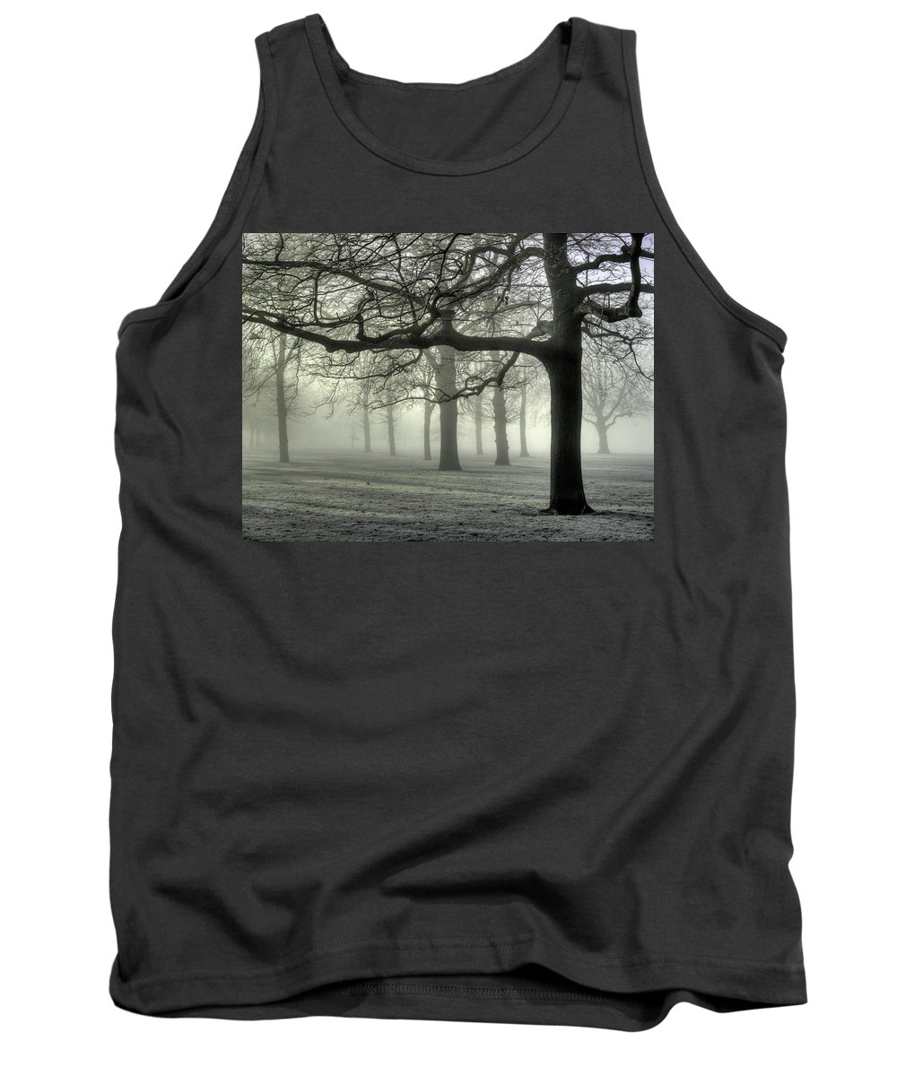 Trees Tank Top featuring the photograph Misty Morning by Andy Linden