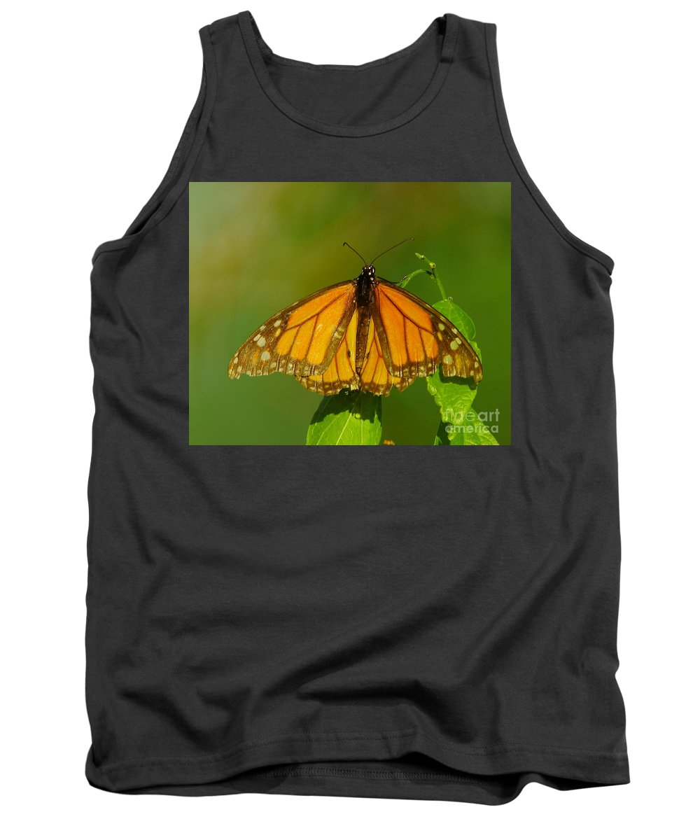 Butterfly Tank Top featuring the photograph Monarch On Hackberry by Robert Frederick