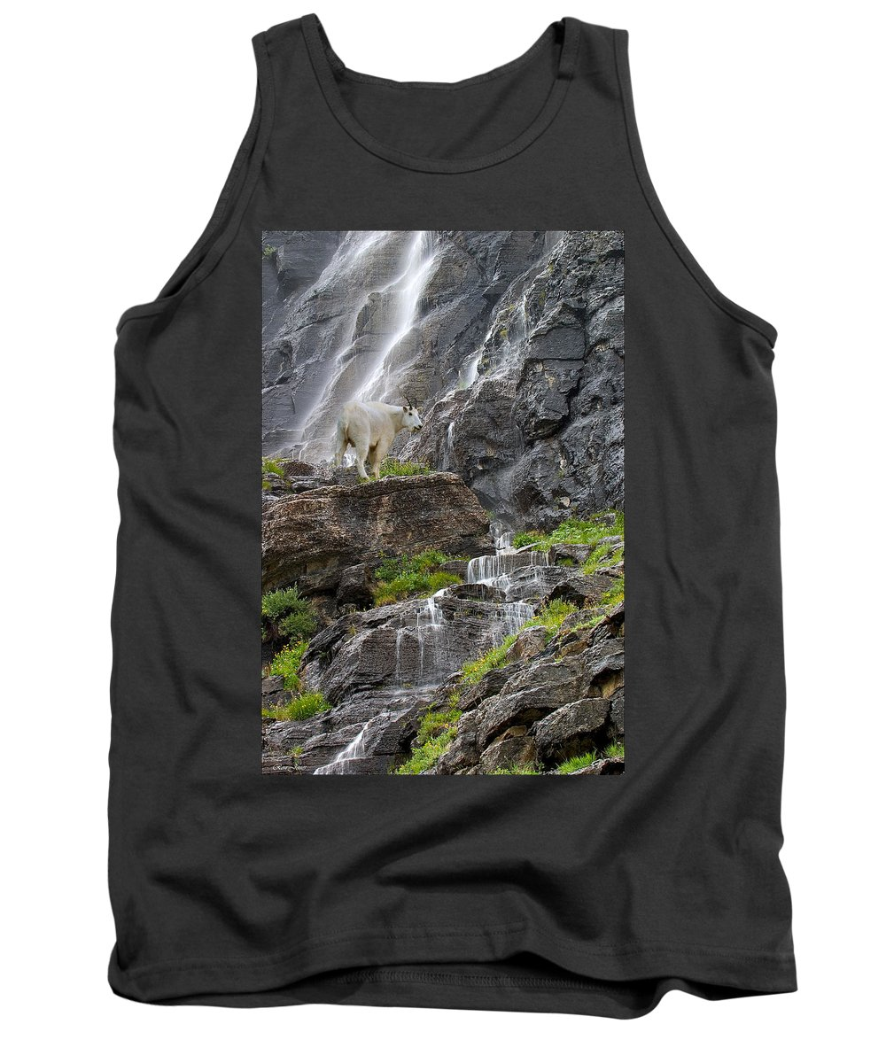 Mountain Tank Top featuring the photograph Mountain Goat by Ron Jones