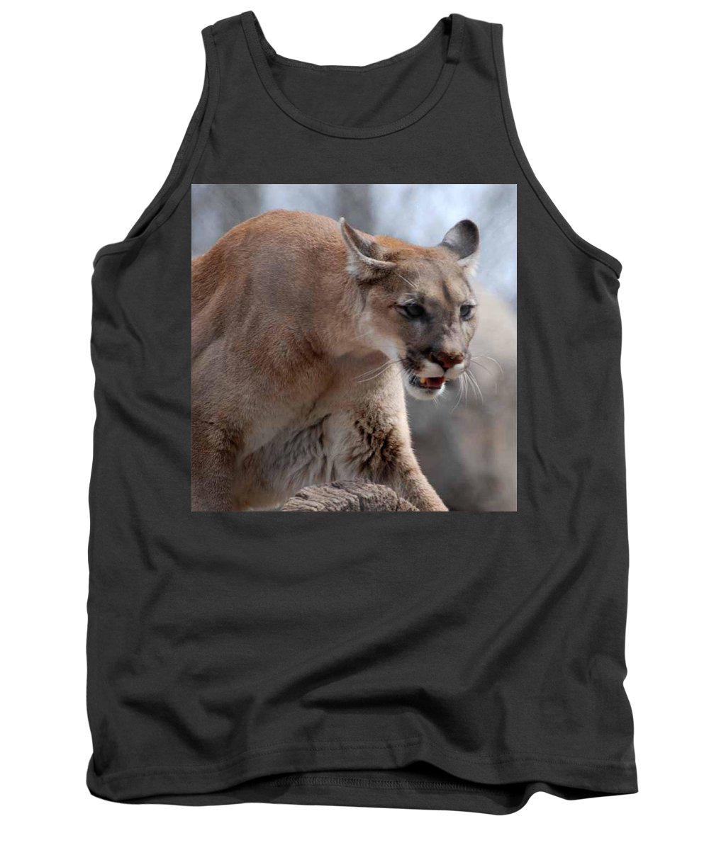 Mountain Tank Top featuring the photograph Mountain Lion by Paul Ward