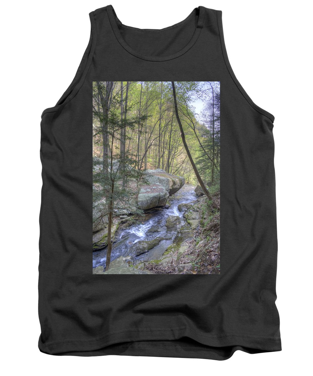Cloudland Canyon Tank Top featuring the photograph Mountain Stream by David Troxel