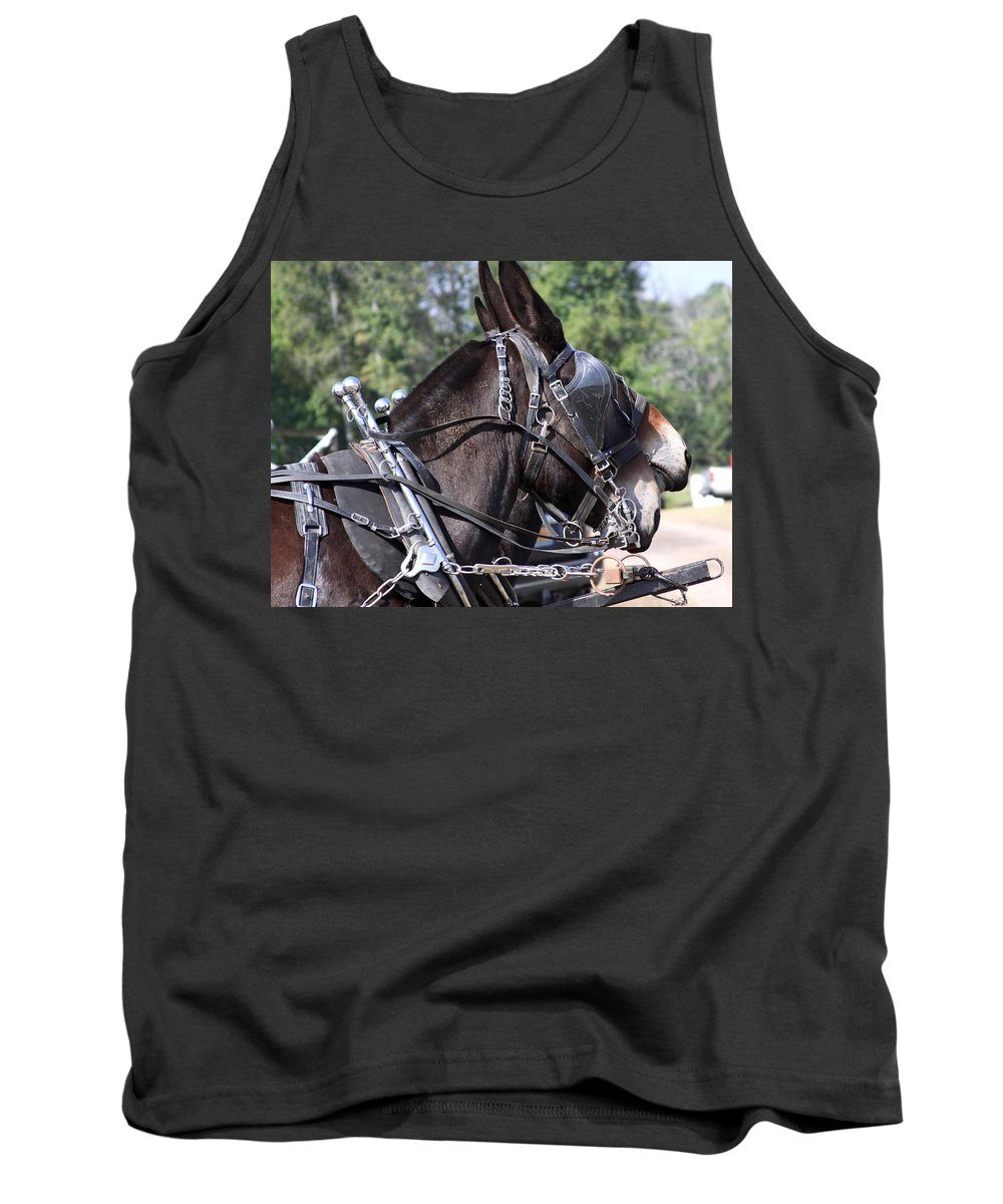 Mule Tank Top featuring the photograph Mule Days - Benson - A Pair Of Aces - Mules by Travis Truelove