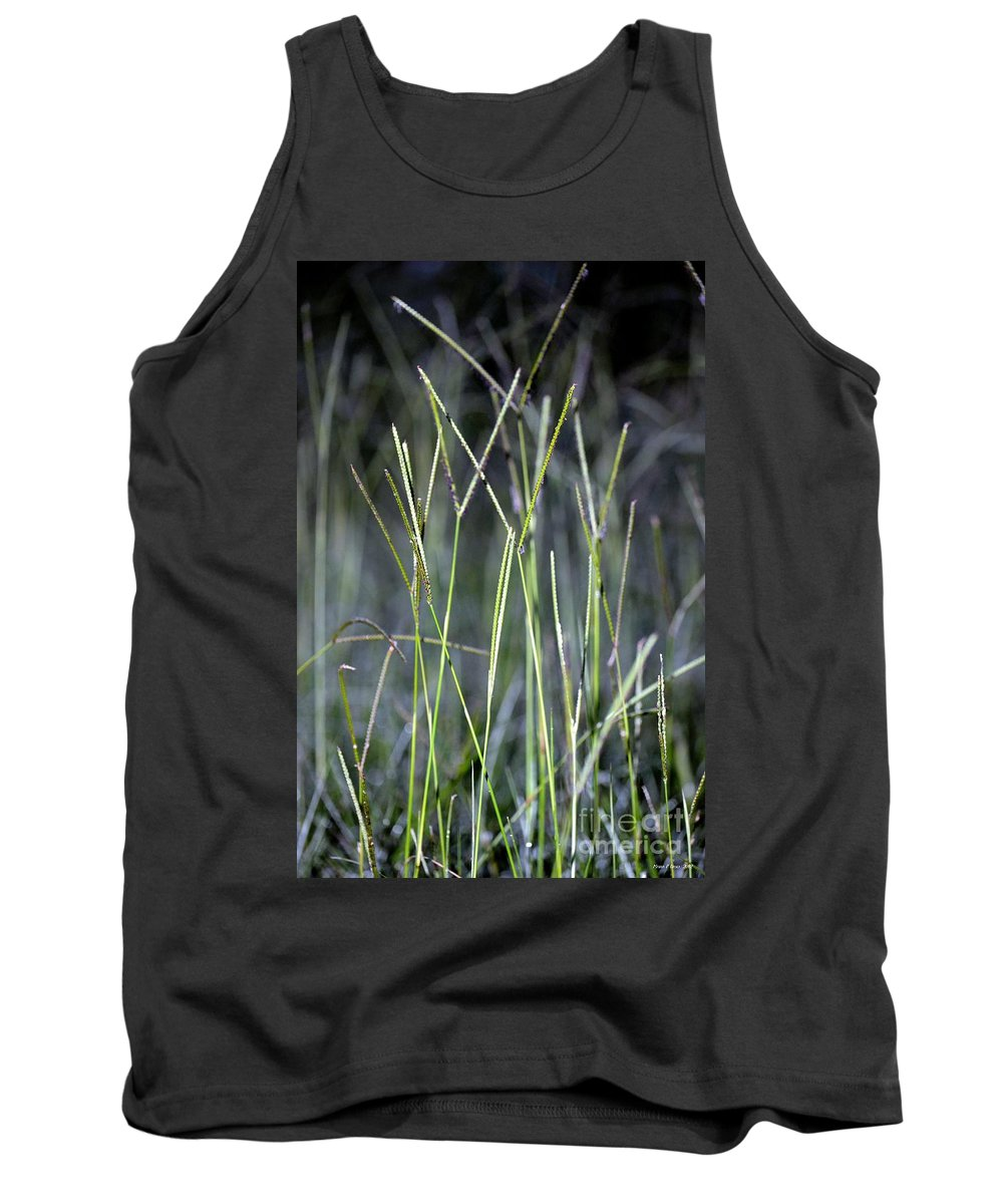 Night Tank Top featuring the photograph Night Walk Through The High Grass by Maria Urso