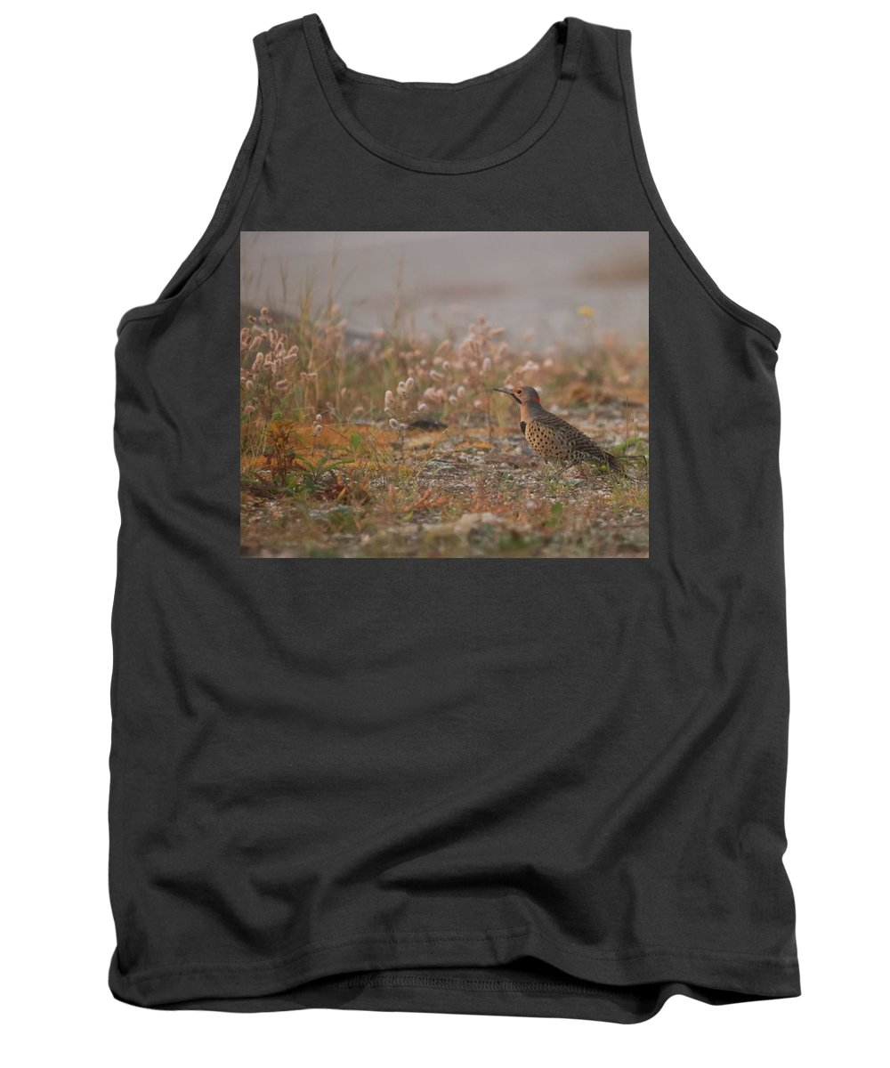 Northern Flicker Tank Tops