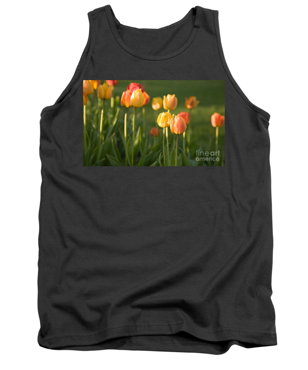 Flower Tank Top featuring the photograph Orange Tulips by Kati Finell