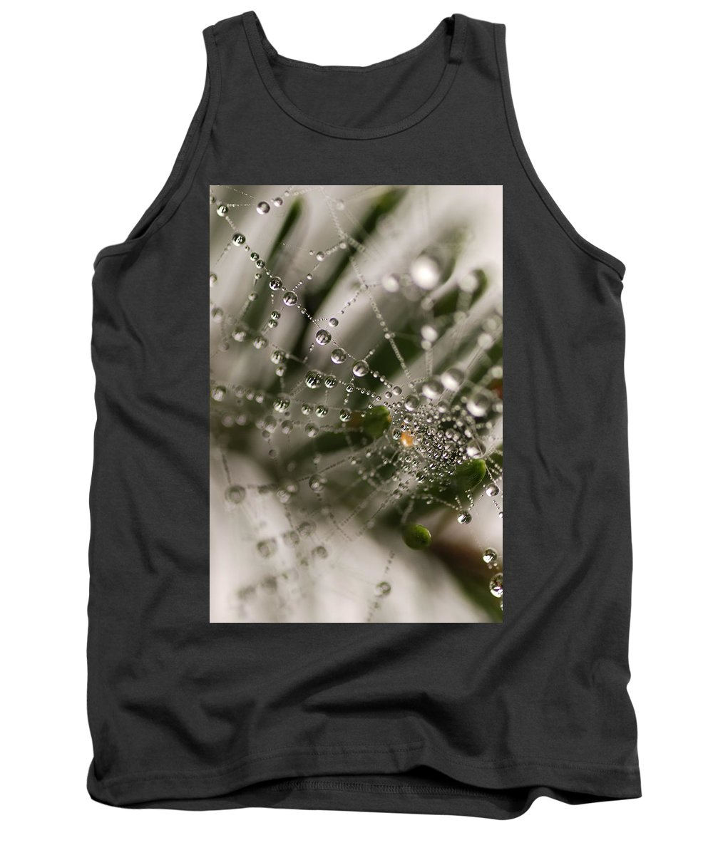 Web Tank Top featuring the photograph Orbiting The Web by Susan Capuano
